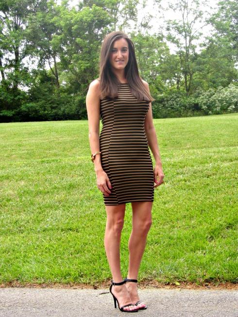 Bar III Brown and Black Striped Dress