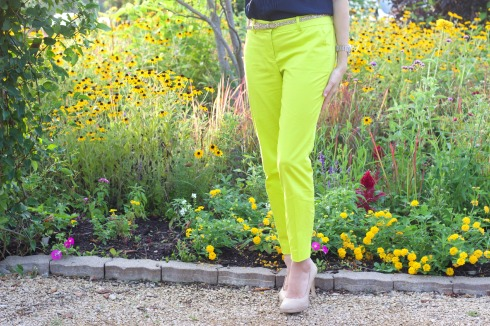 Citron Colored J.Crew Pants