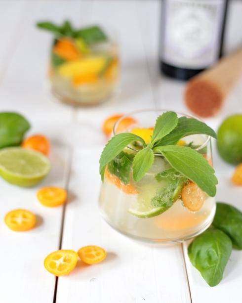 Gin Citrus Cocktail Recipe