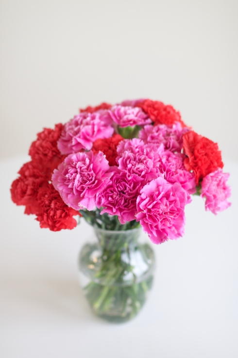 Pink and Red Carnations Valentine's Day