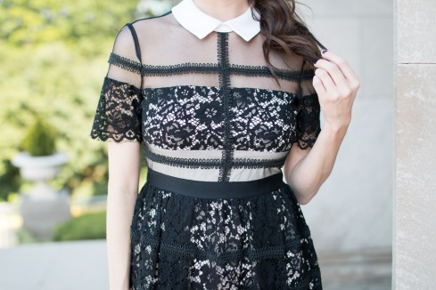 Collared Dress with Lace